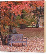 Park Bench In Fall Wood Print