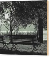Park Benches In Autumn Wood Print
