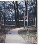 Park Path At Dusk Wood Print