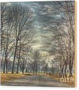 Park Road Wood Print
