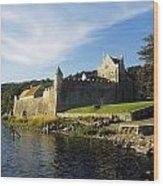 Parkes Castle, Co Leitrim, Ireland Wood Print