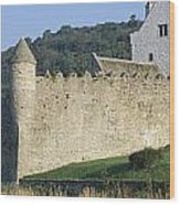 Parkes Castle,co Sligo,irelandpanoramic Wood Print