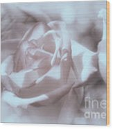 Parlour Rose Wood Print