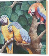 Parrot Painting Wood Print