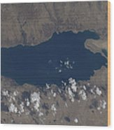 Part Of The Dead Sea And Parts Wood Print by Stocktrek Images