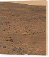Partial Seminole Panorama Of Mars Wood Print