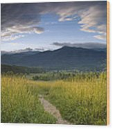 Parting Clouds At The Smokies Wood Print by Andrew Soundarajan