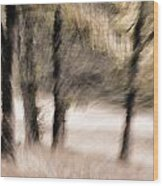 Passing By Trees Wood Print