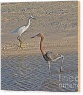 Passing Egrets Wood Print
