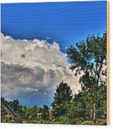 Passing Fantasy Island 55mph  Wood Print