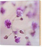 Passion For Flowers. Purple Pearls Of Gypsophila Wood Print