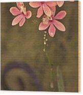 Passionate Pink Wood Print