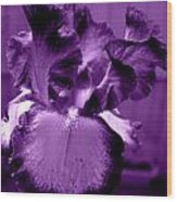 Passionate Purple Overload Wood Print