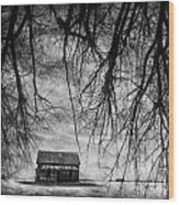 Past The Woods Wood Print