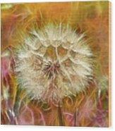 Pastel Dandelion Flare Wood Print