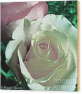 Pastel Pink And White Rose Wood Print