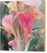 Pastel Pink Cannas Wood Print