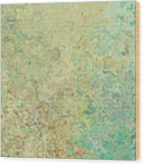 Pastle Green Stone Wood Print