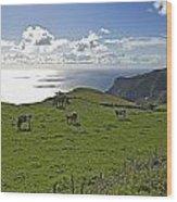 Pastoral Landscape Of Santa Maria Island Wood Print