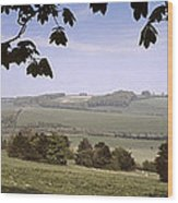 Pastoral Scene In Hampshire Wood Print