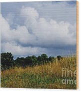 Pasture Field And Stormy Sky Wood Print