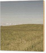 Pasture In Bryne, Norway Wood Print