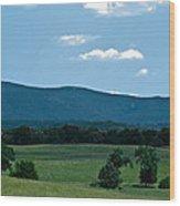 Pastureland Grazers Wood Print