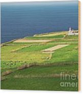 Pastures And Lighthouse Wood Print