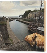 Pasty On The Harbour Wood Print