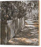 Path Along The Fence Wood Print