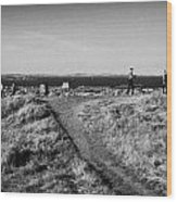 Path Around Calton Hill Looking Towards The Firth Of Forth And Triangulation Point Edinburgh Scotlan Wood Print