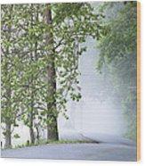 Path Into The Fog Wood Print