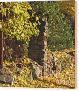 Path Of Yellows Wood Print