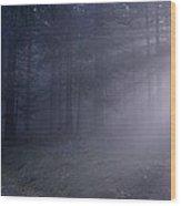 Path Through A Misty Forest Wood Print