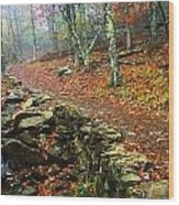 Path Through Forest, Shenandoah Wood Print