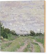 Path Through The Vines At Argenteuil Wood Print