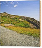Path To Cabot Tower On Signal Hill Wood Print by Elena Elisseeva