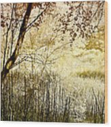 Path To The Meadow Wood Print