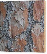 Path Work Wood Print