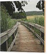 Paths Wood Print
