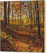 Paths Home Wood Print