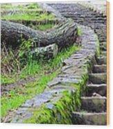 Paths Unlimited Wood Print