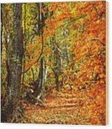 Pathway Through Autumn Woods Wood Print by Cheryl Davis