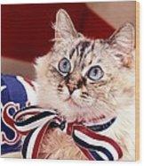 Patriotic Puddy Cat Wood Print