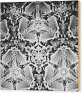 Patterns Of Black And White Wood Print