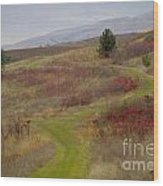 Paved In Green Wood Print by Idaho Scenic Images Linda Lantzy