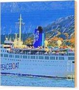 Peace Boat Along South America Coastline Wood Print