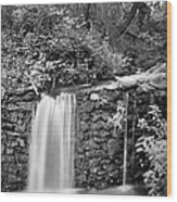 Peace Of Water Wood Print
