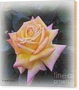 Peace Rose Wood Print