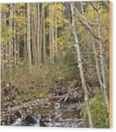 Peaceful Aspens Wood Print